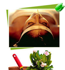Ayurvedic and Panchakarma Treatments